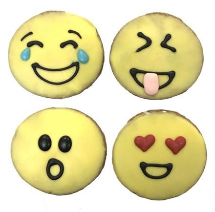 Emojis  20 Count Case 365