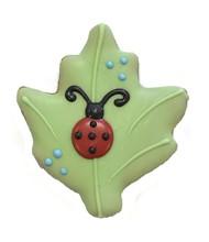 Ladybug Leaf 428