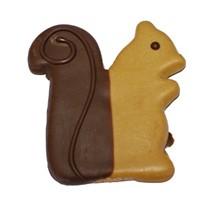 Sammy Squirrel - 20 Ct Case BKY:EVD:00018